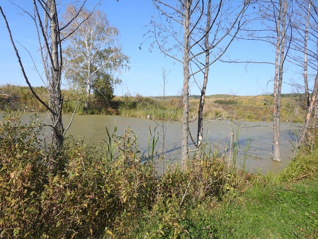 река Кочелай запруды