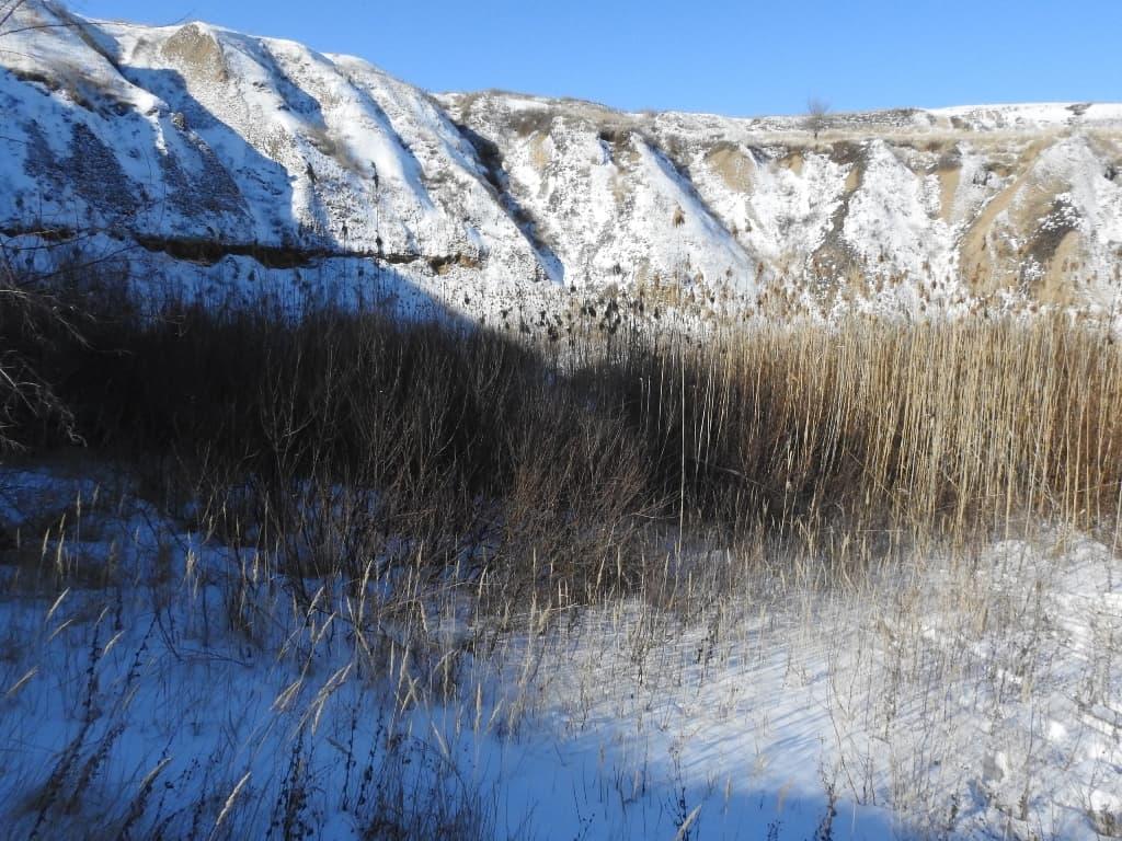 Болото на дне кратера