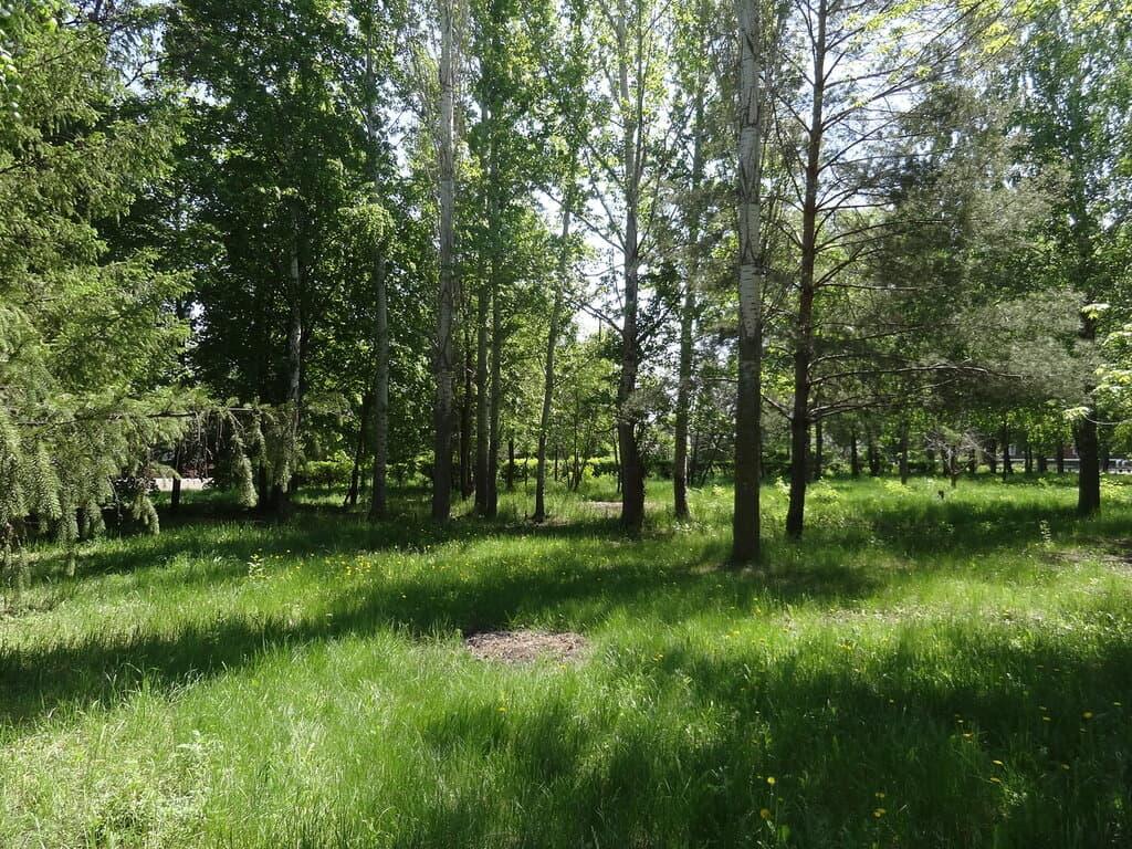 Парк Новопушкинское