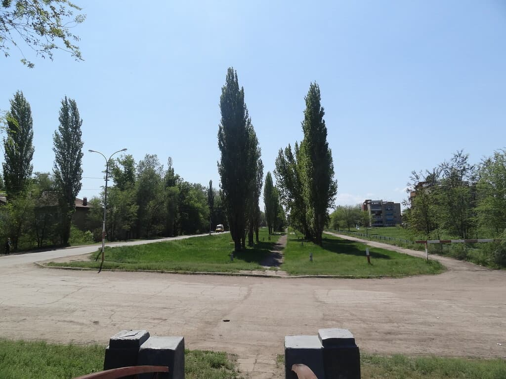 Новопушкинское