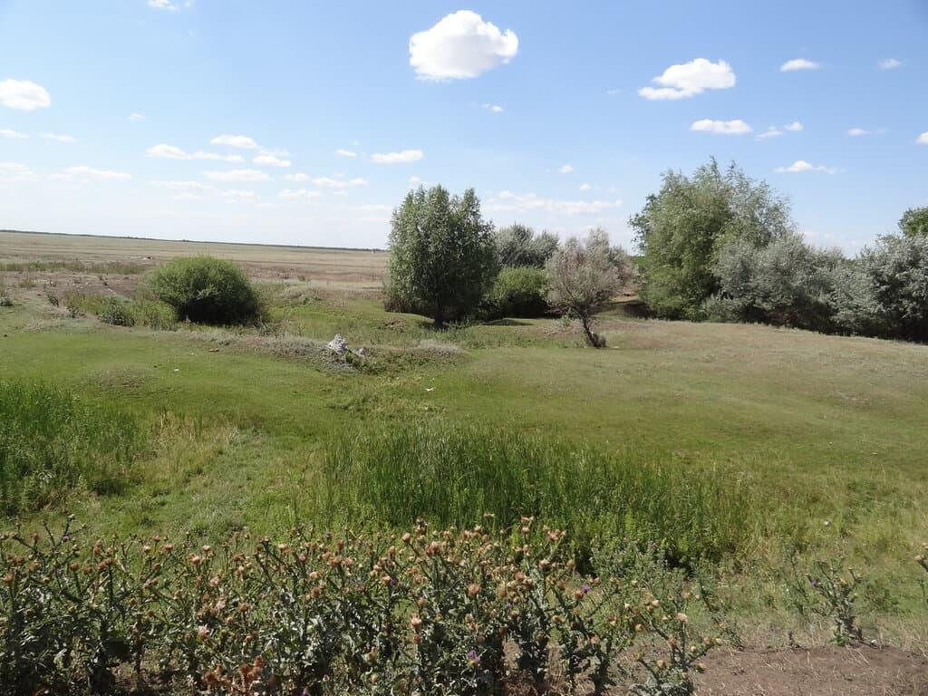 Травянистая долина