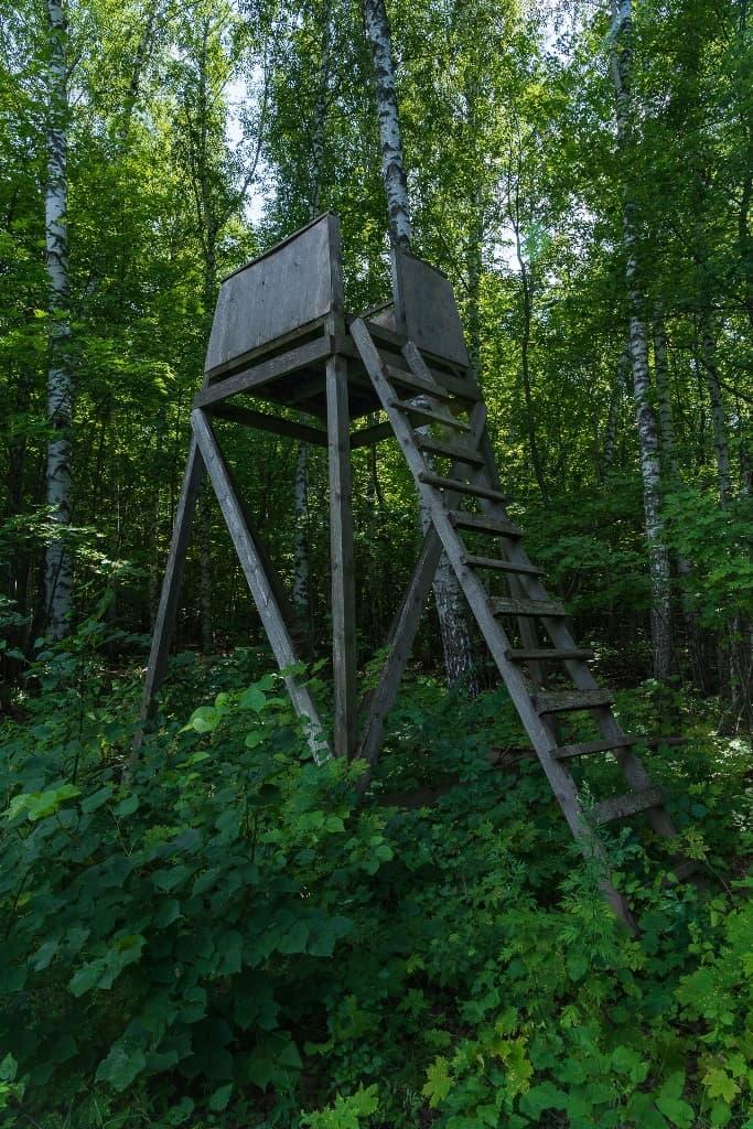 Лесной наблюдательный пункт