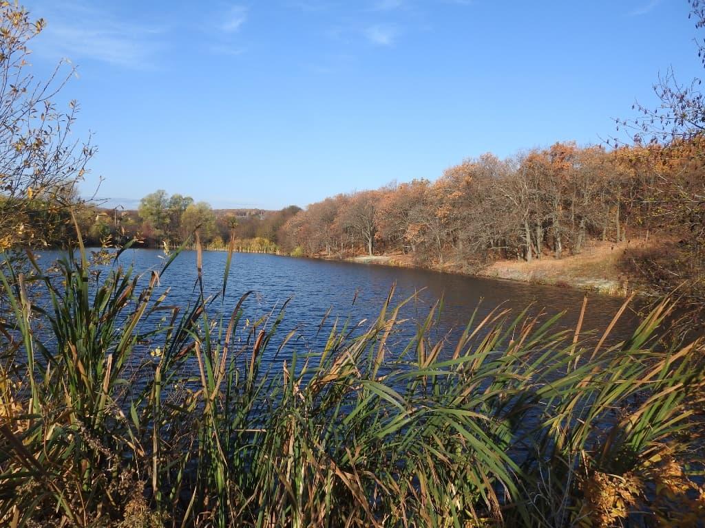 Буркинский пруд