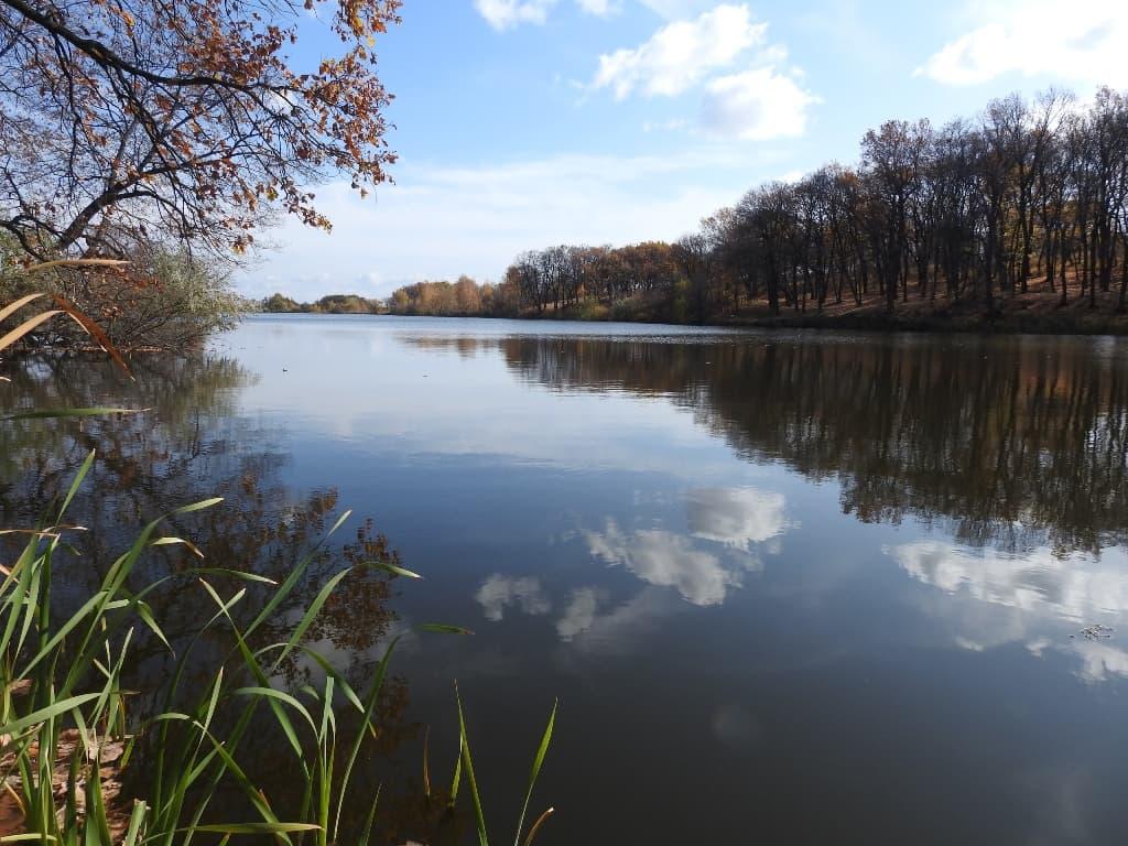 Хмелевский пруд