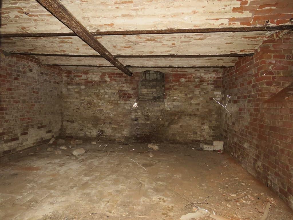 Старицкое старый подвал